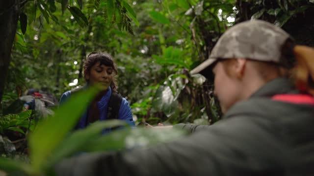 vídeos de stock, filmes e b-roll de mulher ajudando amigo durante caminhada em uma floresta - ecoturismo