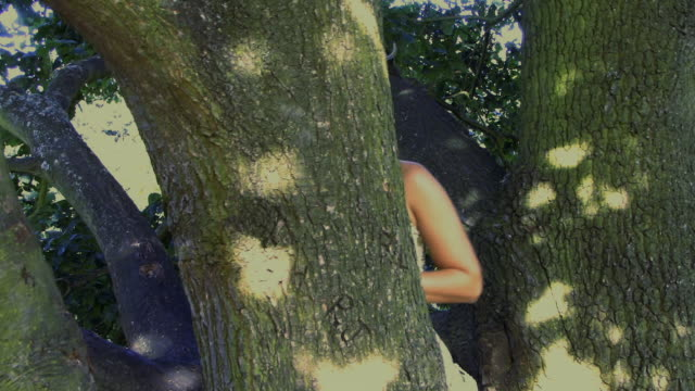 MS PAN Woman hiding behind tree trunk / Hampstead, United Kingdom