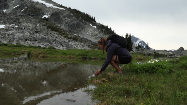 stockvideo's en b-roll-footage met woman hiker gathers water from pristine alpine lake - haar naar achteren