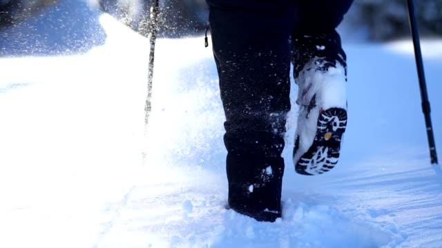 vídeos de stock e filmes b-roll de woman hiker trekking in winter nature - bastão de caminhada