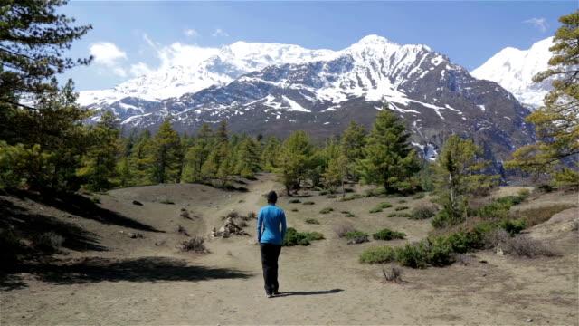 stockvideo's en b-roll-footage met woman hiker walking in annapurna trek, nepal - annapurna range