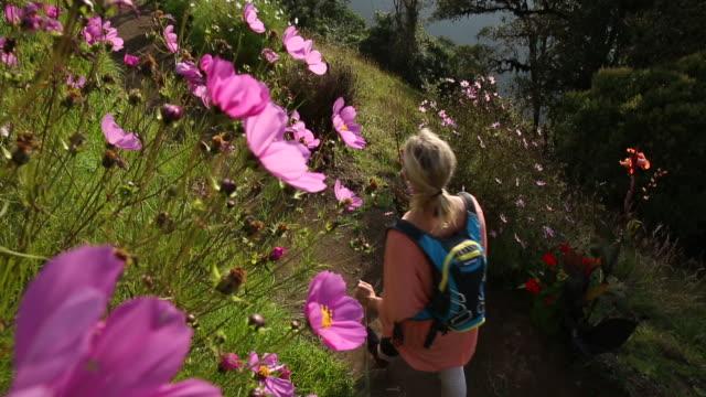 vídeos y material grabado en eventos de stock de woman hikes along of mountain path, looking ahead - bastón de senderismo