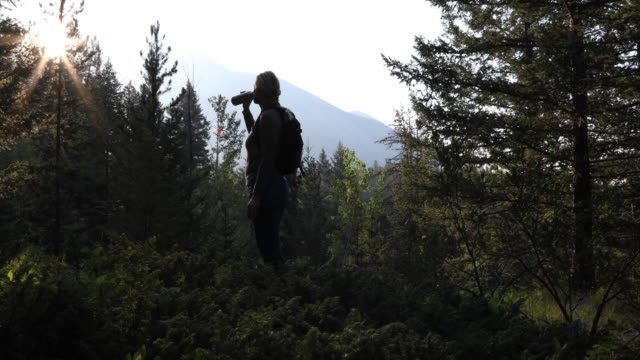 stockvideo's en b-roll-footage met woman hikes through forest, in mountains - alleen één oudere vrouw