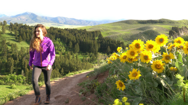 a woman hiking a scenic trail in montana - montana video stock e b–roll