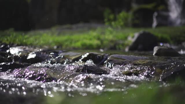 vídeos de stock, filmes e b-roll de mulher que caminha através de um rio com bastões de caminhada - conto de fadas