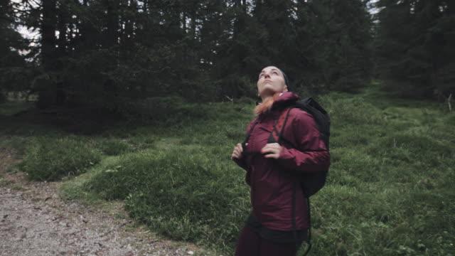 ドロミテの森で一人でハイキングする女性 - exploration点の映像素材/bロール