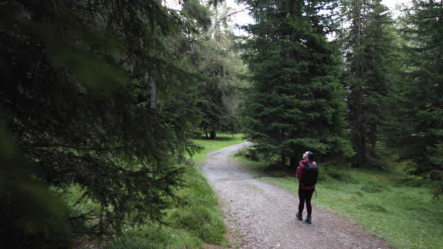 woman hiking alone in the forest of the dolomites - tempo libero video stock e b–roll