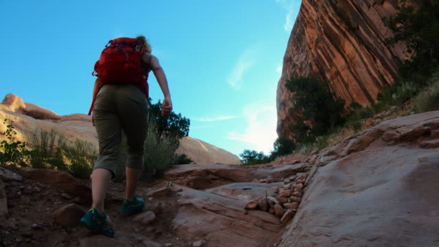 woman hiking in a canyon near moab - national park stock videos & royalty-free footage