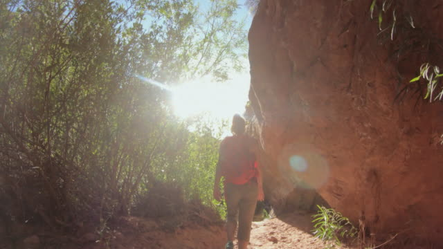 woman hiking in a canyon with poison ivy - moab utah stock videos & royalty-free footage