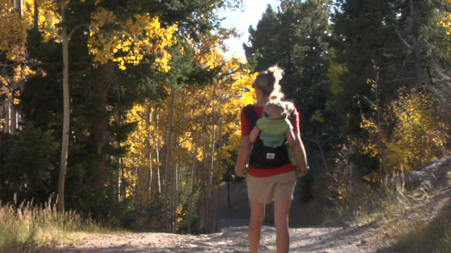 ms, ws, woman hiking in forest, carrying daughter (12-17 months) on back, rear view, autumn, santa fe, new mexico, usa - santa fe new mexico stock videos & royalty-free footage