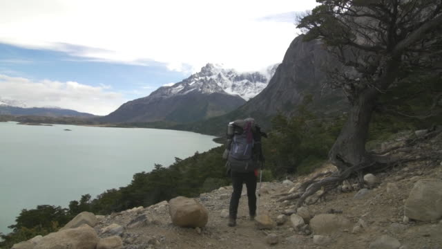 woman hiking in the chilean patagonia - patagonia chile stock videos and b-roll footage