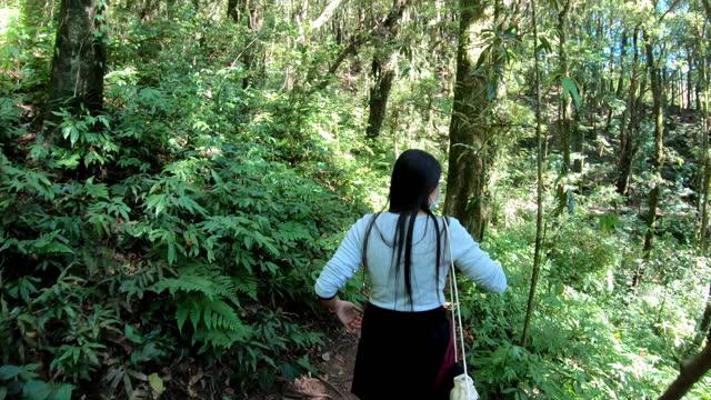vídeos y material grabado en eventos de stock de mujer haciendo senderismo en la montaña y el bosque - prevención de enfermedades