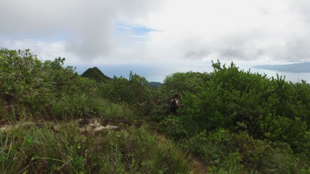woman hiking on path through the tropical forest, back view