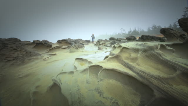 ms slo mo pov woman hiking on sculpted sandstone by sea / shore acres state park, oregon, united states - sandstone stock videos & royalty-free footage