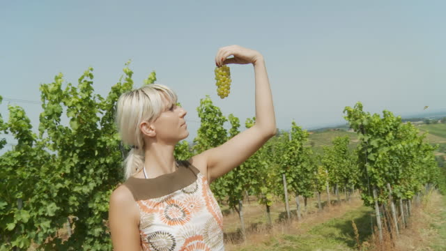 hd steady shot: woman holding a bunch of grape - grape leaf stock videos and b-roll footage