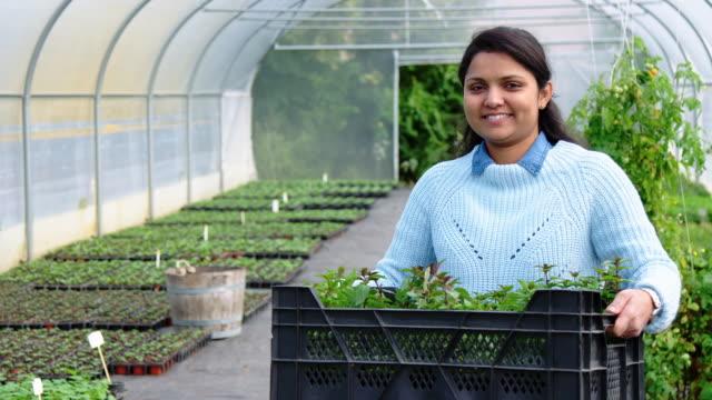 woman holding a crate full of plants in greenhouse - centro per il giardinaggio video stock e b–roll