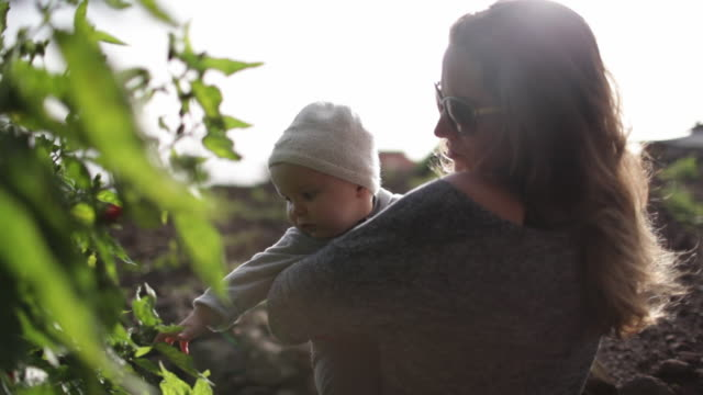 Woman holding baby outside, looking at tree together on sunny day.