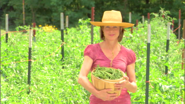 woman holding basket of beans - see other clips from this shoot 1425 stock videos and b-roll footage