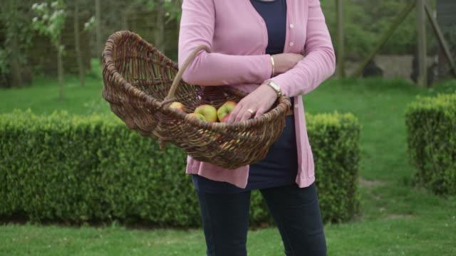 woman holding basket - solo una donna matura video stock e b–roll