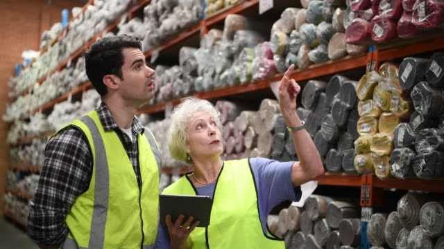 女性持株デジタル タブレット ポインティングと工場の人に説明します。 - 倉庫作業員点の映像素材/bロール