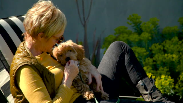 woman holding her puppy in backyard - black hairy women stock videos & royalty-free footage