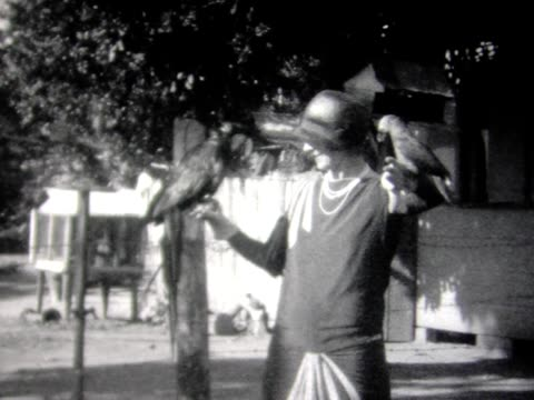 1929 woman holding parrot. street life in bermuda. - 1920 1929 video stock e b–roll