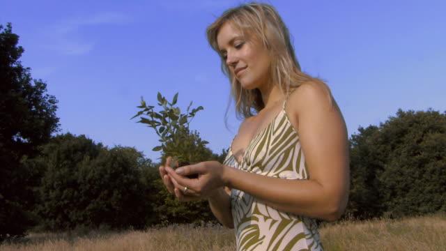 vídeos y material grabado en eventos de stock de ms td pan woman holding plant / hampstead, united kingdom - manos ahuecadas