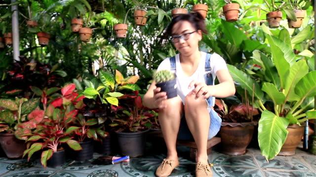 vidéos et rushes de hd :  femme tenant pot de cactus. - cactus pot