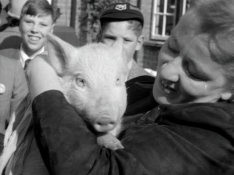 stockvideo's en b-roll-footage met a woman holds and strokes a pig who then sniffs her neck 1952 - neus van een dier