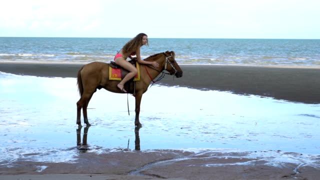 vídeos de stock, filmes e b-roll de equitação de mulher na praia, cavalo de witth de estilo de vida na praia - cavalgar