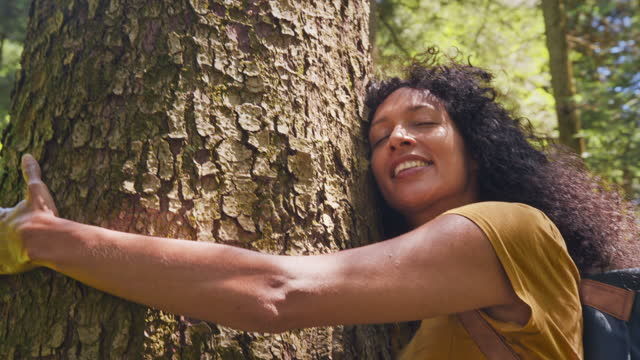 vídeos y material grabado en eventos de stock de mujer abrazando un árbol en el bosque soleado - conservacionista