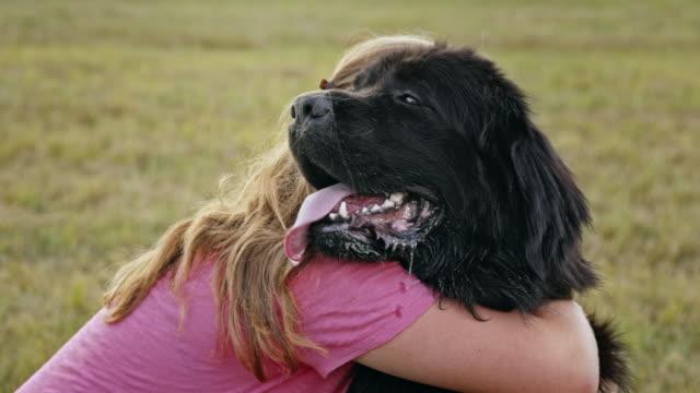 SLO MO Woman hugging her black Newfoundland dog