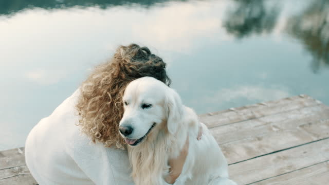 woman hugging retriever dog - locs hairstyle stock videos & royalty-free footage