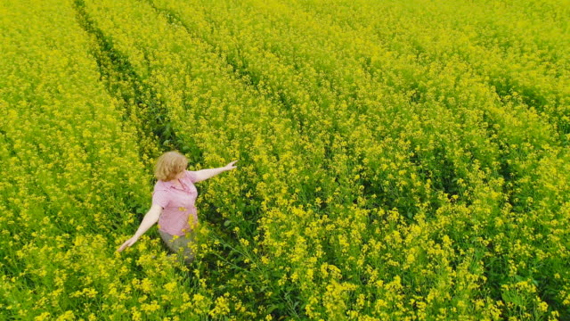 a woman in a rapeseed field - short hair stock videos & royalty-free footage