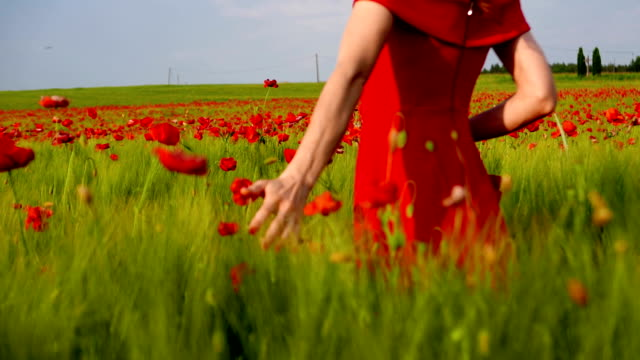 a woman in a red dress walks past a field of grain. - red dress stock videos & royalty-free footage