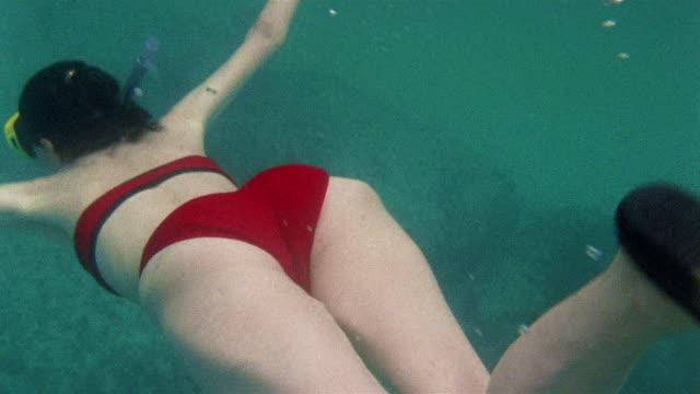 CU Woman in bikini scuba diving and swimming underwater / North Bimini, Bahamas