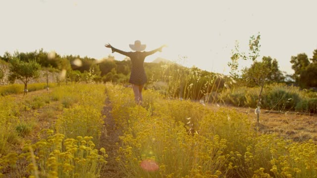 ms woman in dress and sun hat walking in sunny,idyllic rural field - sun hat stock videos & royalty-free footage
