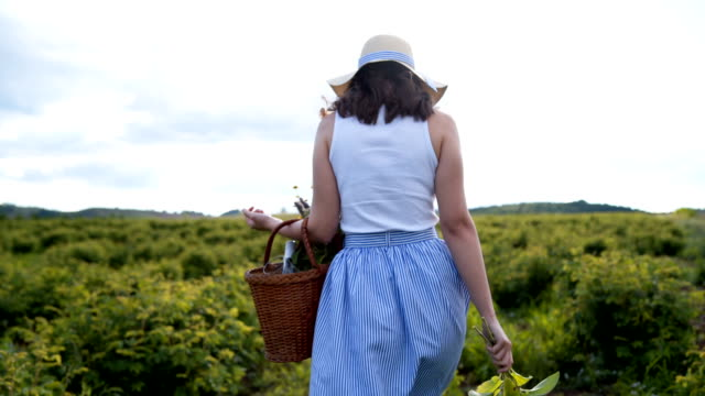 woman in dress walking in field of plant - dress stock videos & royalty-free footage