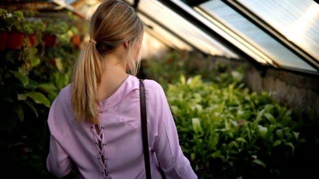 vídeos de stock e filmes b-roll de woman in flower greenhouse florist shop - florista