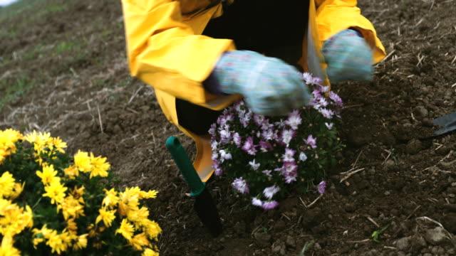 vídeos y material grabado en eventos de stock de mujer en el jardín - bieldo equipo agrícola