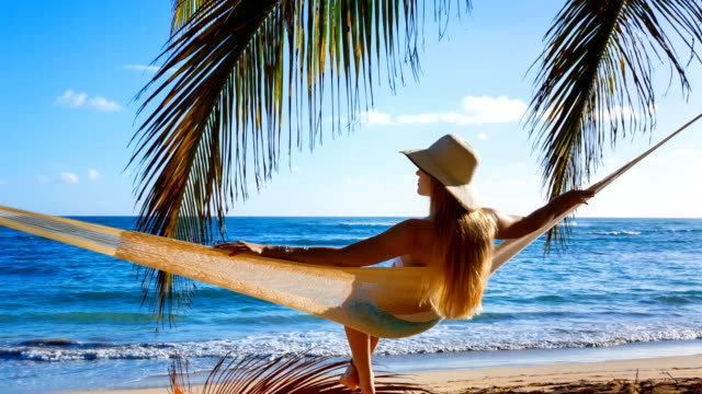 woman in hammock on beach - palm tree stock videos & royalty-free footage