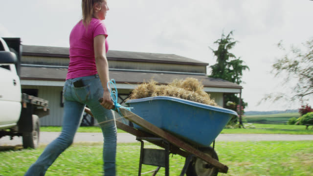 a woman in her twenties wheels a wheelbarrow to a fenced-in pasture and throws hay into a corral for horses to eat on a farm on a partly cloudy day - rancher stock videos & royalty-free footage