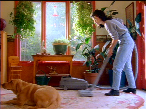 Woman in living room vacuuming next to yellow dog lying on carpet