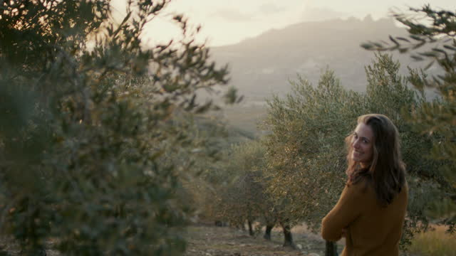 woman in olive orchard in italy at sunset - tranquility stock videos & royalty-free footage