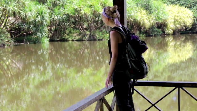 woman in the borneo rain forest exploring - sabah state stock videos and b-roll footage
