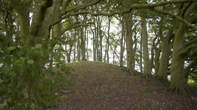 a woman in the distance sitting on top of one of the avebury barrows at overton hill - tomb stock videos & royalty-free footage