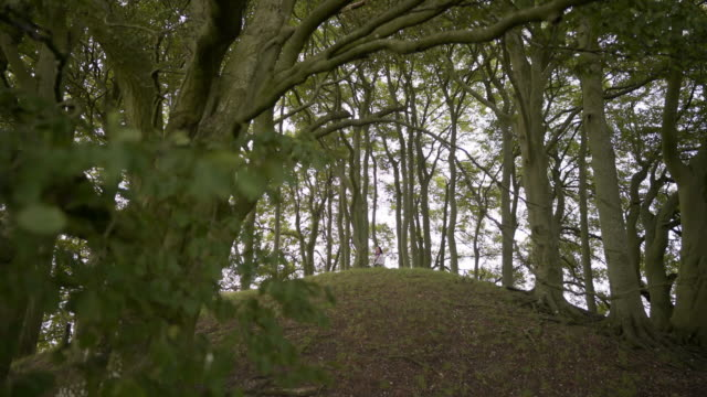 a woman in the distance sitting on top of one of the avebury barrows at overton hill - avebury stock videos & royalty-free footage