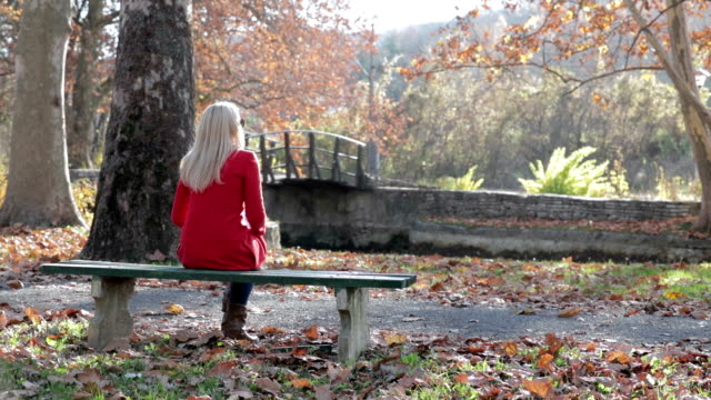 woman in the park - bench stock videos & royalty-free footage