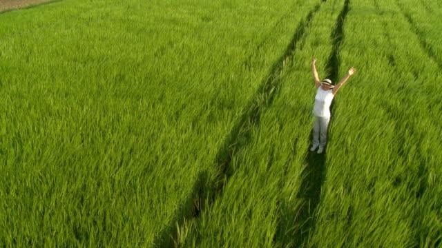 HD クレーン:女性の小麦のフィールド