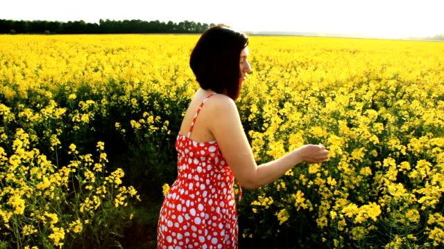 woman in the yellow field - crucifers stock videos & royalty-free footage